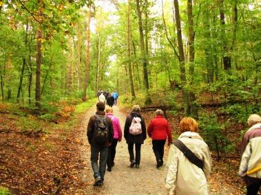 Erntedankwanderung Rudow-Humboldthain (2)
